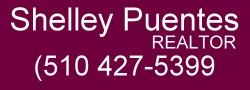 Shelley Puentes Real Estate Services